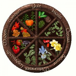 Lagniappe Loot - Wheel of the Year- July - Oils