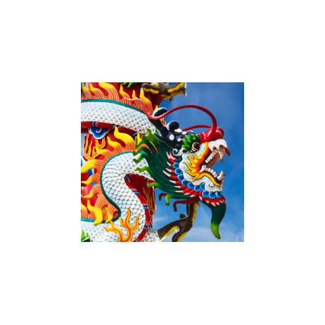 Manchurian Dragon Oil