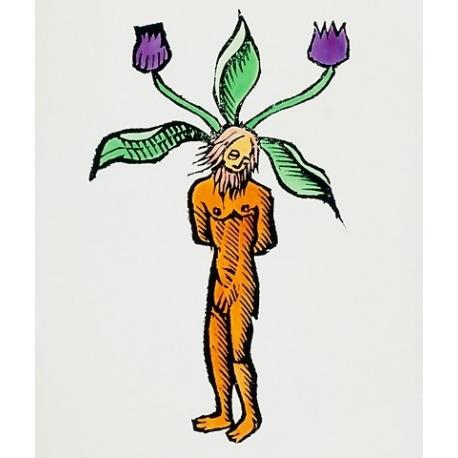 Mandrake Magick Oil