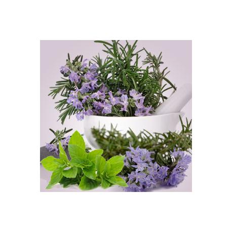 Rosemary Mint Oil