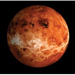 Planetary - Venus Oil
