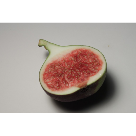 Fig Oil
