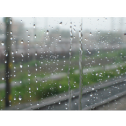 Rain Oil