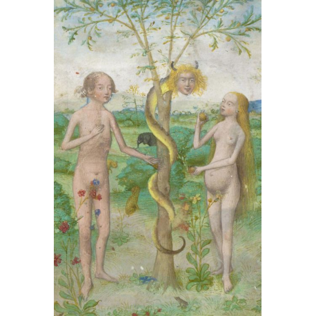 Adam and Eve Oil