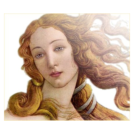 Aphrodite's Love Drawing Oil