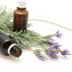 Black Amber & Lavender Stick  Incense