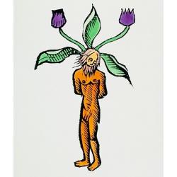 Mandrake Magick Stick Incense