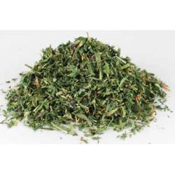 Alfalfa (Medicago sativa L)