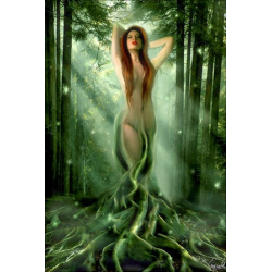 Woodland Elves Oil