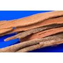 Cassia Stick Incense
