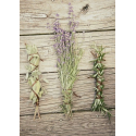 Lavender, Sage and Rosemary Oil