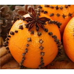 Orange Spice Oil